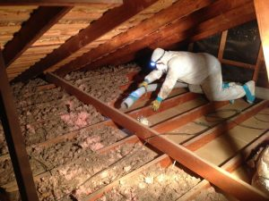 Attic Insulation Removal